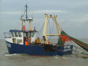 essextrawler2006.jpg